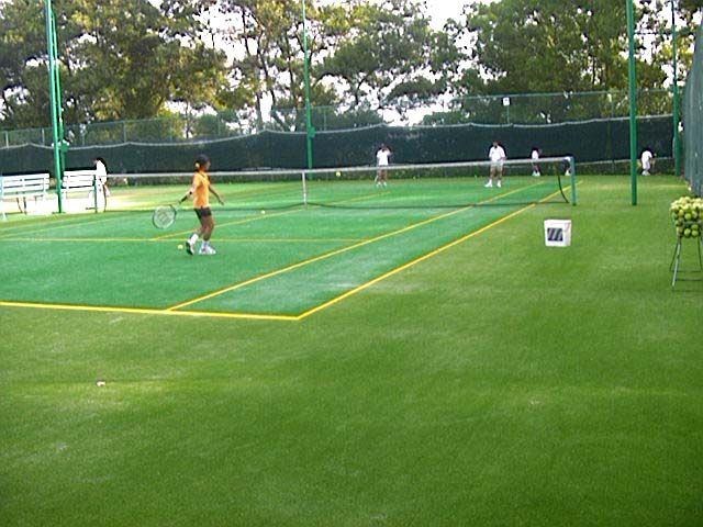 bukit jambul country club synthetic grass courts