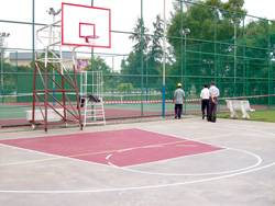 intel's basketball court with post